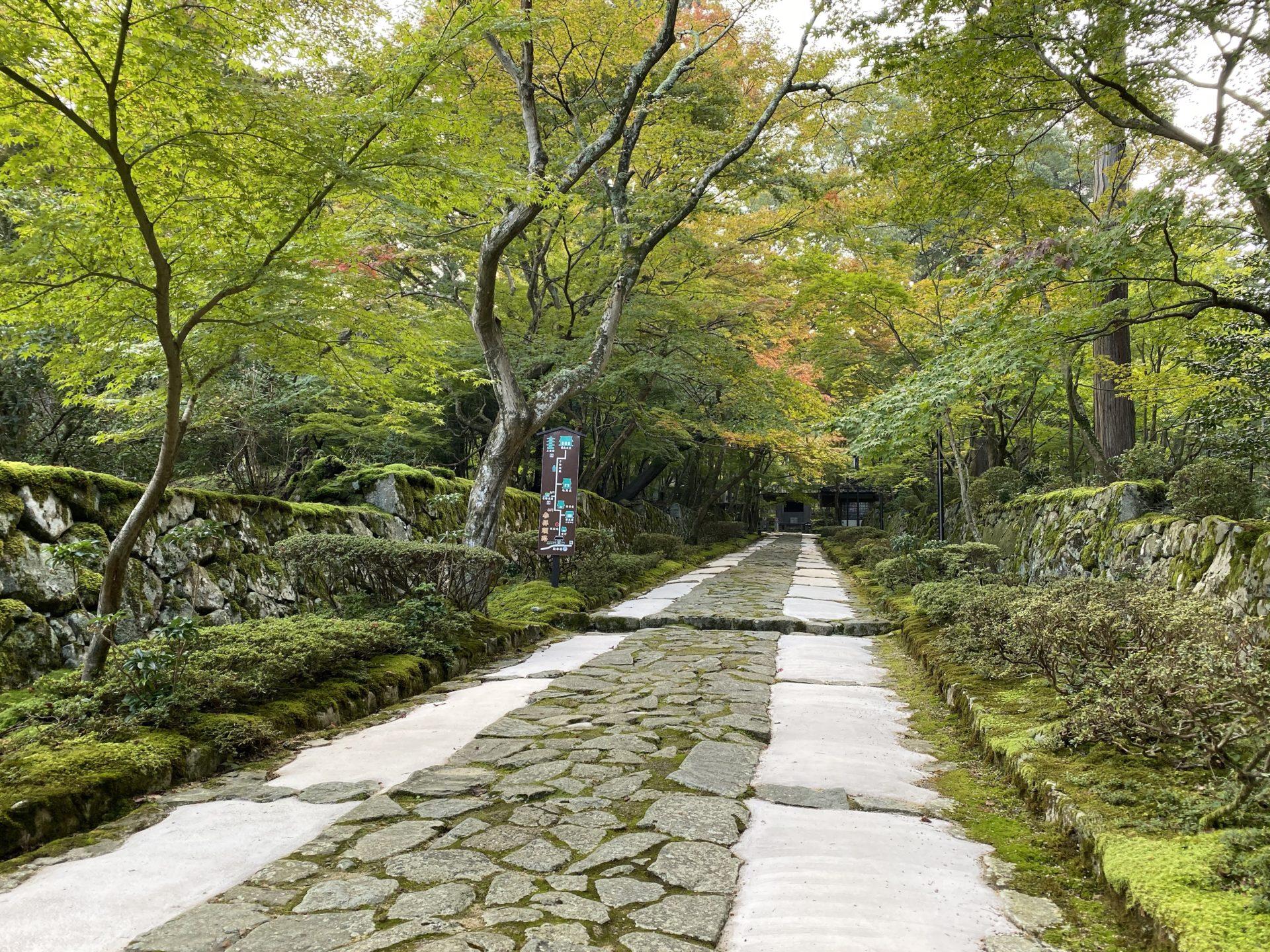 金剛輪寺の参道