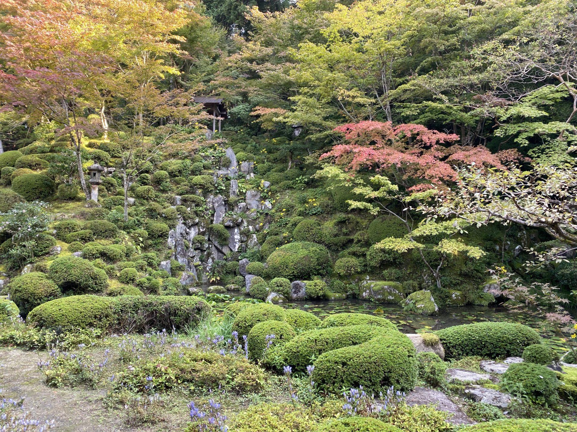 金剛輪寺 名勝庭園