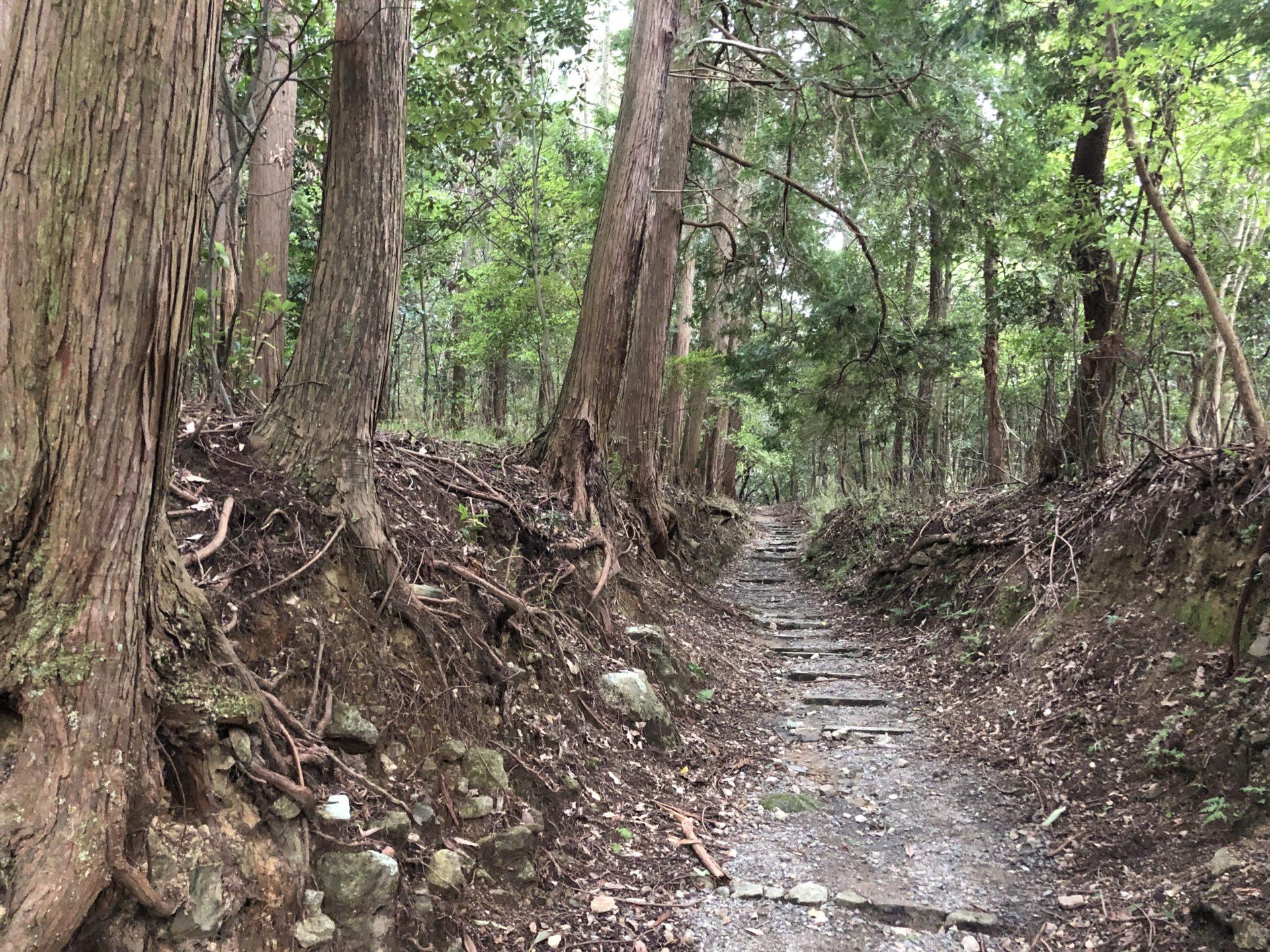 御蔭神社への道