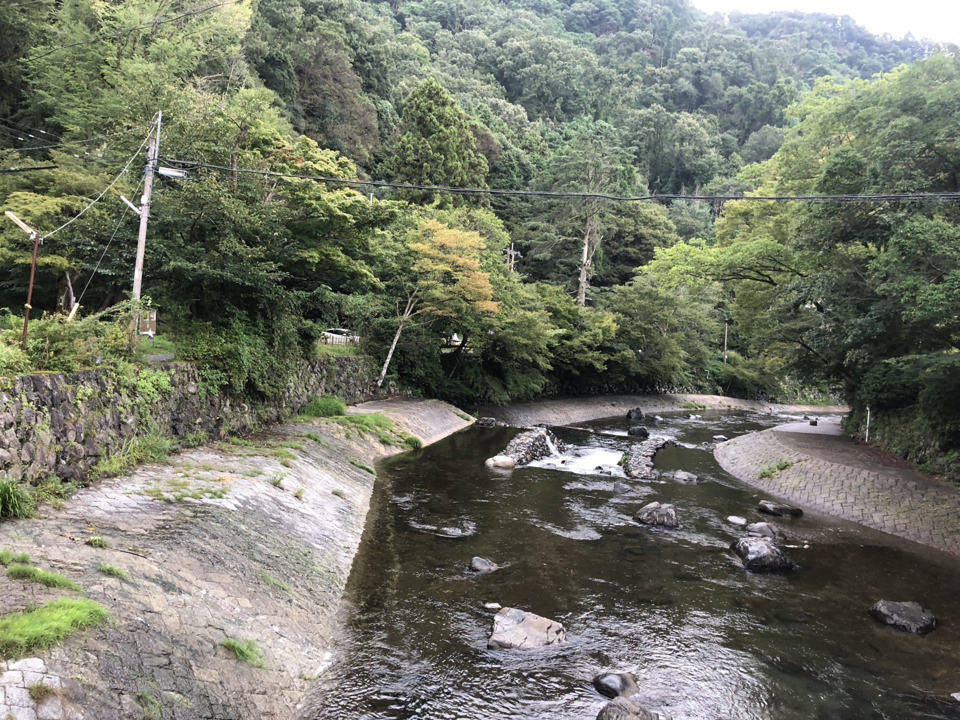高野川の橋からの景色